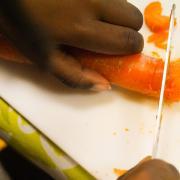 Découverte de la carotte