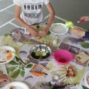 Atelier du goût improvisé dans la cour de l'école